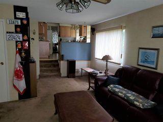 Photo 6: 4900 FORTUNE AVENUE in Richmond: Steveston North House for sale : MLS®# R2432774