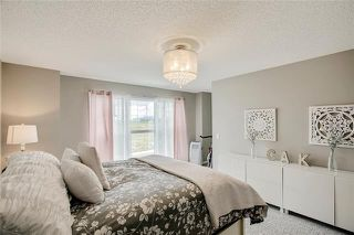 Photo 31: 393 MASTERS Avenue SE in Calgary: Mahogany Detached for sale : MLS®# C4302572