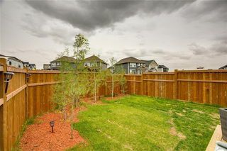 Photo 44: 393 MASTERS Avenue SE in Calgary: Mahogany Detached for sale : MLS®# C4302572