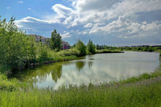 Photo 32: 240 MCKENZIE TOWNE Link SE in Calgary: McKenzie Towne Row/Townhouse for sale : MLS®# A1017413