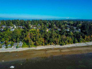 Photo 29: 66 ENGLISH BLUFF Road in Delta: Pebble Hill House for sale (Tsawwassen)  : MLS®# R2495805