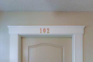 Photo 34: 102 10610 76 Street in Edmonton: Zone 19 Condo for sale : MLS®# E4215796