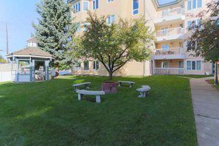 Photo 22: 102 10610 76 Street in Edmonton: Zone 19 Condo for sale : MLS®# E4215796