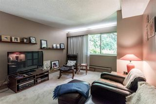 Photo 12: 1060 HULL Court in Coquitlam: Ranch Park House for sale : MLS®# R2513896