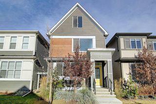 Photo 1: 53 Seton Manor SE in Calgary: Seton Detached for sale : MLS®# A1046513