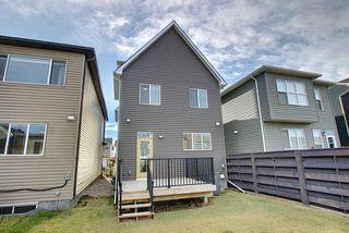 Photo 47: 53 Seton Manor SE in Calgary: Seton Detached for sale : MLS®# A1046513