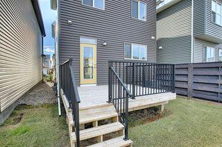 Photo 44: 53 Seton Manor SE in Calgary: Seton Detached for sale : MLS®# A1046513