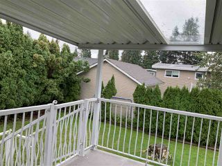 Photo 14: 46024 CLARE Avenue in Chilliwack: Fairfield Island House for sale : MLS®# R2407402