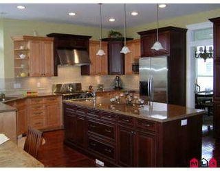Photo 10: Morgan Creek - 3694 156A ST in Surrey: Morgan Creek House for sale (White Rock & District)  : MLS®# Morgan Creek