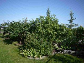 Photo 23: 8327 Shaske Crescent in Edmonton: Zone 14 House for sale : MLS®# E4168868