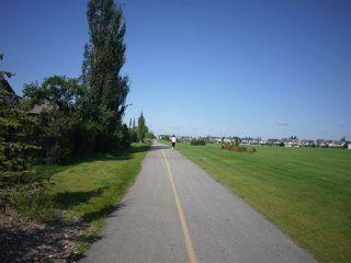 Photo 25: 8327 Shaske Crescent in Edmonton: Zone 14 House for sale : MLS®# E4168868