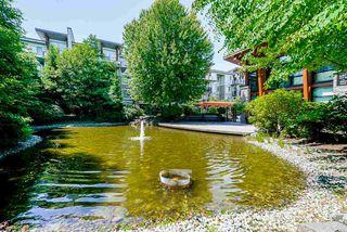 Photo 20: 409 6628 120 STREET in Surrey: West Newton Condo for sale : MLS®# R2463342