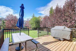 Photo 39: 158 AUBURN GLEN Circle SE in Calgary: Auburn Bay Detached for sale : MLS®# A1029957
