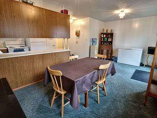 Photo 9: 4315 79 Street in Edmonton: Zone 29 House Half Duplex for sale : MLS®# E4172128
