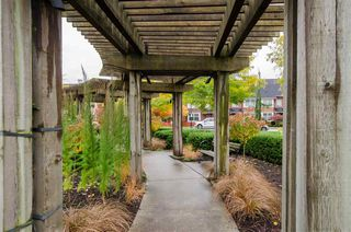 """Photo 20: 202 245 BROOKES Street in New Westminster: Queensborough Condo for sale in """"DUO A"""" : MLS®# R2414608"""