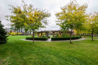 """Photo 18: 202 245 BROOKES Street in New Westminster: Queensborough Condo for sale in """"DUO A"""" : MLS®# R2414608"""