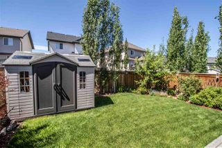 Photo 6: 1960 67 Street in Edmonton: Zone 53 House for sale : MLS®# E4202959
