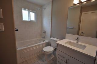 Photo 19: 8753 92A Avenue in Edmonton: Zone 18 House for sale : MLS®# E4203954