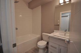 Photo 28: 8753 92A Avenue in Edmonton: Zone 18 House for sale : MLS®# E4203954