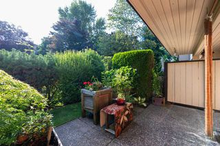 "Photo 25: 44 2962 NELSON Place in Abbotsford: Central Abbotsford Townhouse for sale in ""Willband Creek"" : MLS®# R2475236"