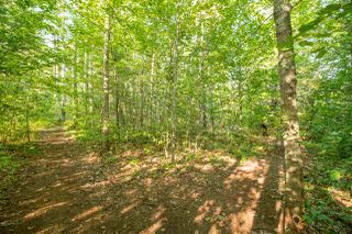 Photo 23: 538 Pleasant Valley Road in Somerset: 404-Kings County Residential for sale (Annapolis Valley)  : MLS®# 202016953