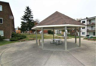 Photo 22: 104 11435 41 Avenue in Edmonton: Zone 16 Condo for sale : MLS®# E4216450
