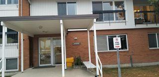 Photo 2: 104 11435 41 Avenue in Edmonton: Zone 16 Condo for sale : MLS®# E4216450