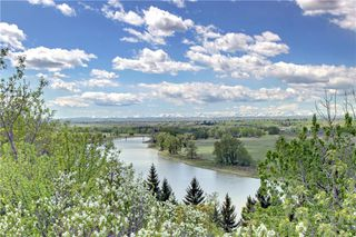 Photo 46: 37 Mt Alberta View SE in Calgary: McKenzie Lake Detached for sale : MLS®# A1043599