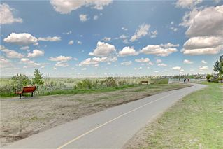 Photo 45: 37 Mt Alberta View SE in Calgary: McKenzie Lake Detached for sale : MLS®# A1043599