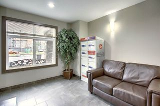 Photo 24: 312 6070 SCHONSEE Way in Edmonton: Zone 28 Condo for sale : MLS®# E4218748
