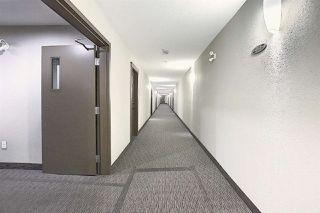 Photo 26: 312 6070 SCHONSEE Way in Edmonton: Zone 28 Condo for sale : MLS®# E4218748