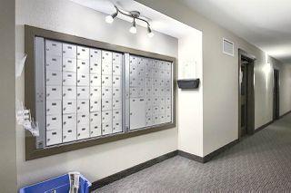 Photo 25: 312 6070 SCHONSEE Way in Edmonton: Zone 28 Condo for sale : MLS®# E4218748