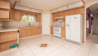 Photo 7: 9741 161 Street in Edmonton: Zone 22 House for sale : MLS®# E4165943