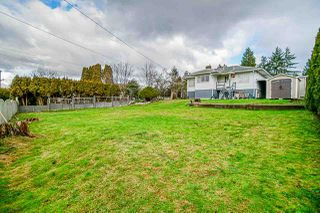 Photo 10: 11169 136 Street in Surrey: Bolivar Heights House for sale (North Surrey)  : MLS®# R2431564