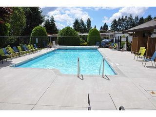 """Photo 19: 219 1840 160 Street in Surrey: King George Corridor Manufactured Home for sale in """"Breakaway Bays"""" (South Surrey White Rock)  : MLS®# R2436590"""