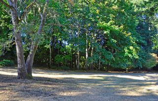 Photo 26: 415B Gamble Pl in : Co Colwood Corners Half Duplex for sale (Colwood)  : MLS®# 850476