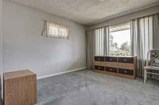 Photo 16: 2427 23 Street NW in Calgary: Banff Trail Detached for sale : MLS®# A1025508