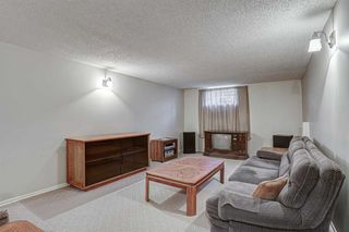 Photo 23: 2427 23 Street NW in Calgary: Banff Trail Detached for sale : MLS®# A1025508
