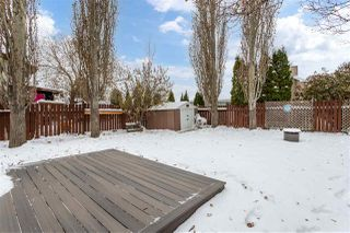 Photo 36: 3220 44A Street in Edmonton: Zone 29 House for sale : MLS®# E4221294