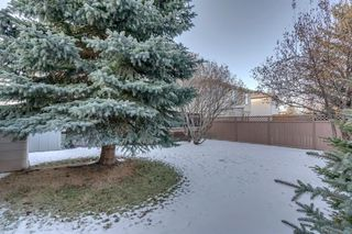 Photo 42: 239 Douglasbank Drive SE in Calgary: Douglasdale/Glen Detached for sale : MLS®# A1050993