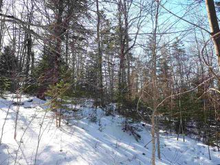 Photo 11: LOT Stronach Mountain Road in Forest Glade: 400-Annapolis County Vacant Land for sale (Annapolis Valley)  : MLS®# 201924165