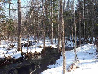 Photo 4: LOT Stronach Mountain Road in Forest Glade: 400-Annapolis County Vacant Land for sale (Annapolis Valley)  : MLS®# 201924165