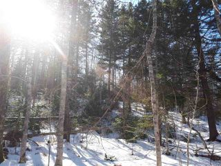 Photo 8: LOT Stronach Mountain Road in Forest Glade: 400-Annapolis County Vacant Land for sale (Annapolis Valley)  : MLS®# 201924165