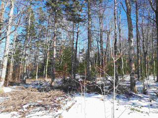 Photo 7: LOT Stronach Mountain Road in Forest Glade: 400-Annapolis County Vacant Land for sale (Annapolis Valley)  : MLS®# 201924165