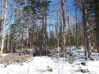 Photo 3: LOT Stronach Mountain Road in Forest Glade: 400-Annapolis County Vacant Land for sale (Annapolis Valley)  : MLS®# 201924165