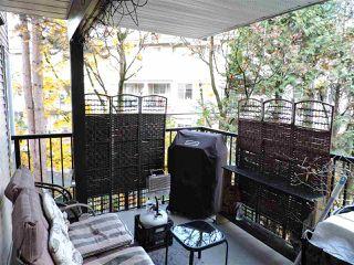 "Photo 5: 213 2401 HAWTHORNE Avenue in Port Coquitlam: Central Pt Coquitlam Condo for sale in ""Stonebrook"" : MLS®# R2419064"