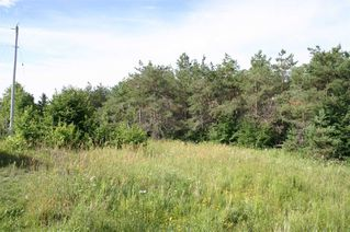 Photo 20: Lot 2 Con 3 in Mulmur: Rural Mulmur Property for sale : MLS®# X4807127
