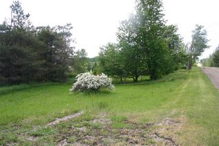 Photo 8: Lot 2 Con 3 in Mulmur: Rural Mulmur Property for sale : MLS®# X4807127