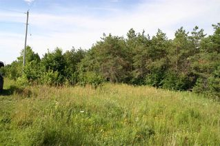Photo 19: Lot 2 Con 3 in Mulmur: Rural Mulmur Property for sale : MLS®# X4807127