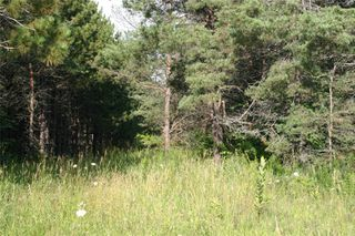 Photo 12: Lot 2 Con 3 in Mulmur: Rural Mulmur Property for sale : MLS®# X4807127